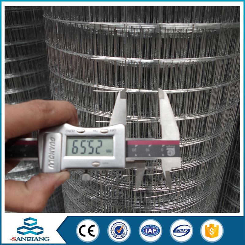 3/4inch galvanized best price welded wire mesh chicken cage machine