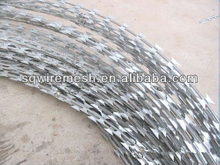 All kinds of competitive price razor barbed wire